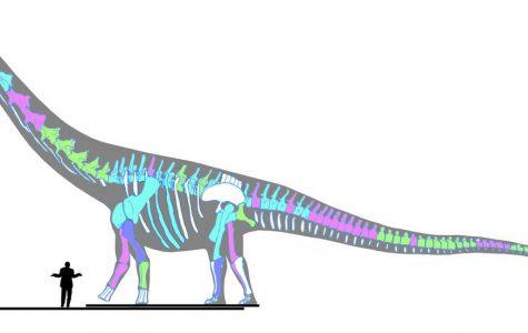Sue takes back seat to 70-ton dinosaur